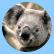 Аватар пользователя Kostya111